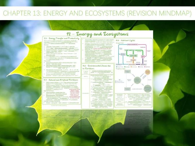 AQA A-Level - Biology : 13 -  Energy and Ecosystems (Revision Mindmap)