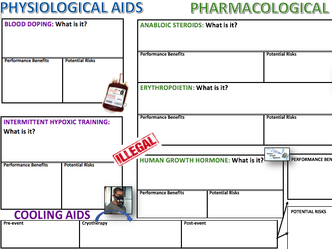 A level OCR PE Ergogenic Aids Revision A3 Worksheet