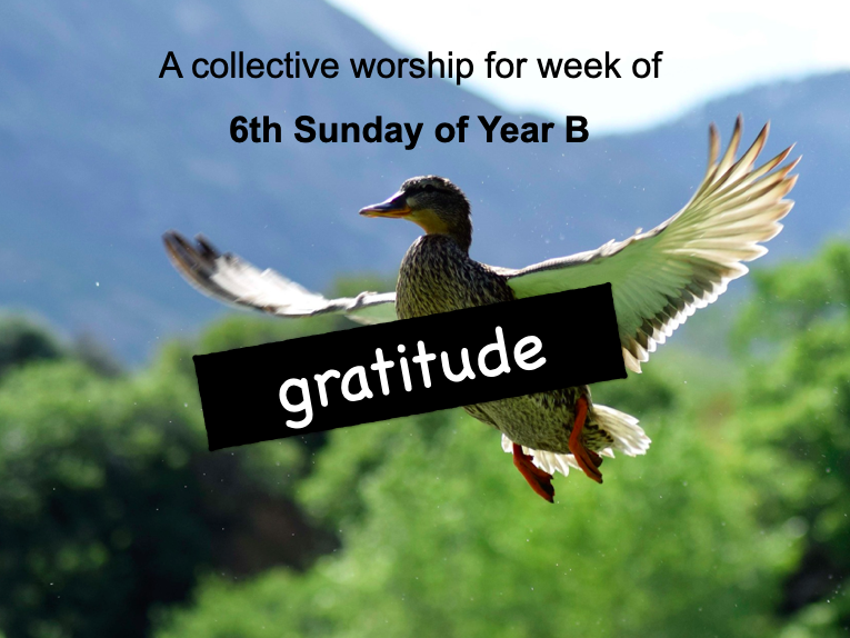 collective worship Catholic 6th Sunday year B