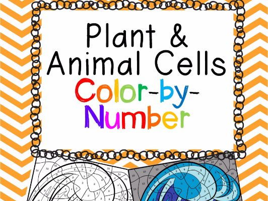 Plant And Animal Cells Color By Number Shaynaa