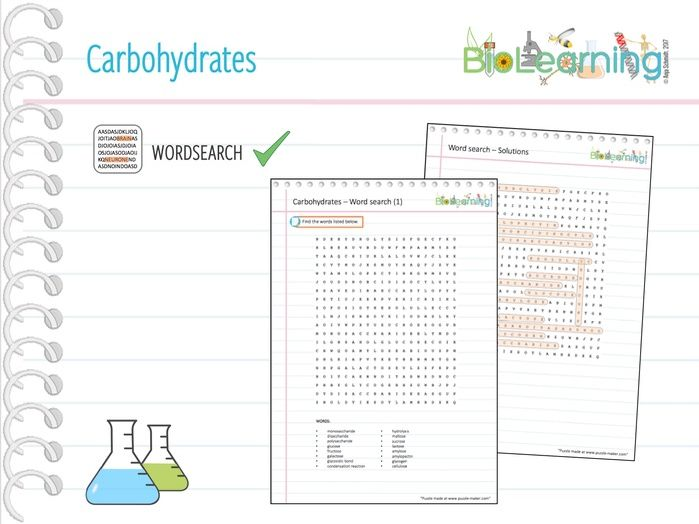 Carbohydrates - Word search (KS5)