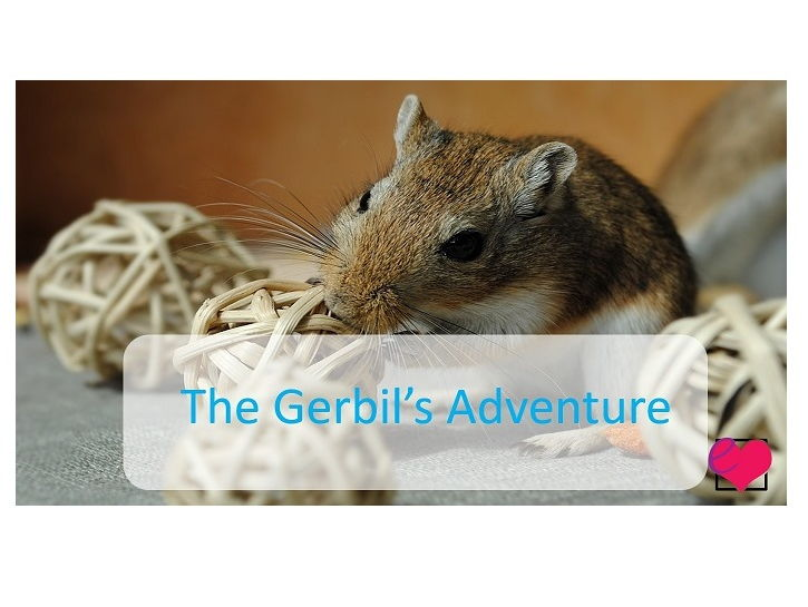 The Gerbil's Adventure Comprehension Pack