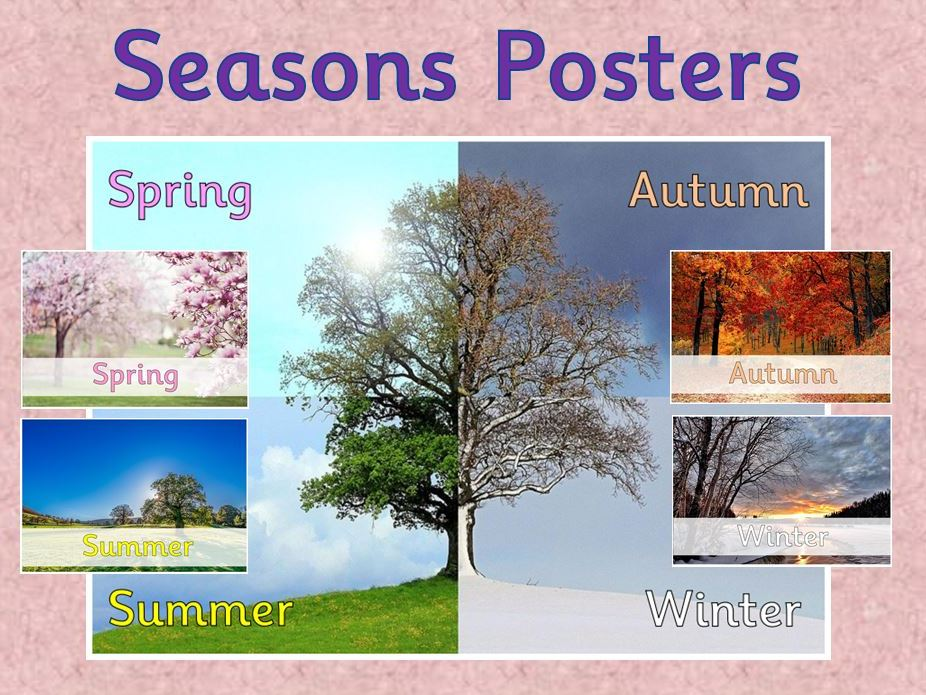 Seasons Posters (senses)