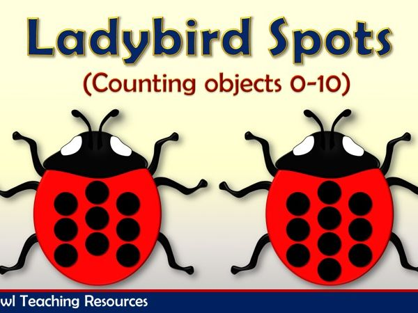 Ladybird Spots Counting Objects 0-10