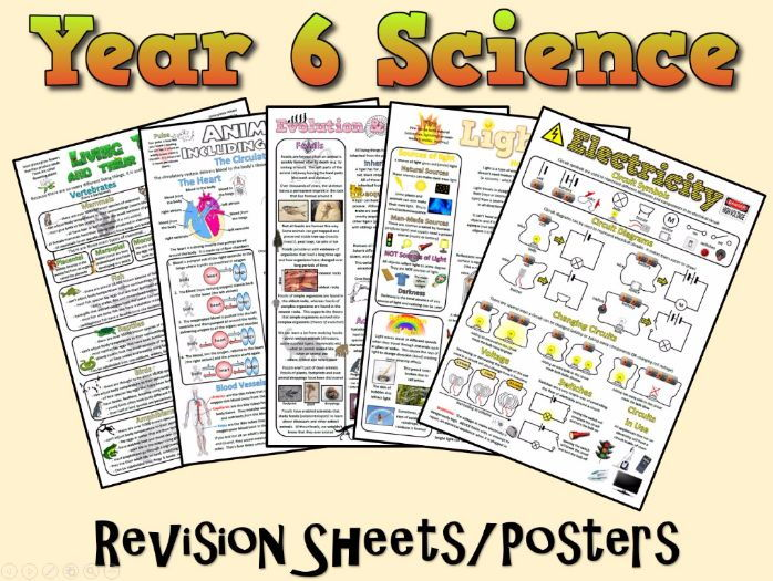 Year 6 Science Posters/Revision Sheets
