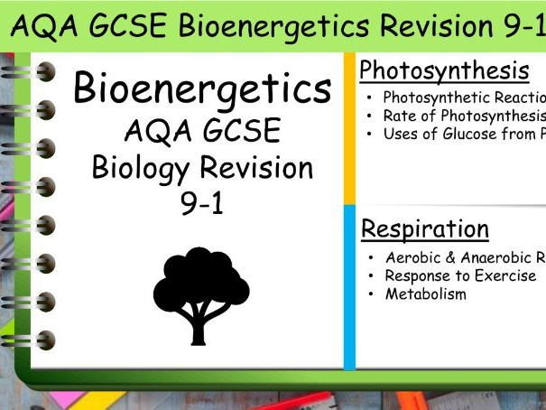 B4 Bioenergetics AQA GCSE Science Biology Revision 9-1