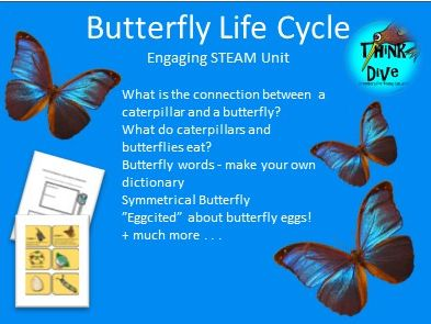 Butterfly, Life Cycle - Project based learning, KS1, NGSS, STEAM, Biomimicry