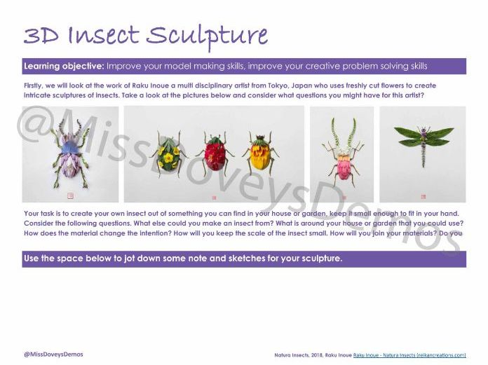 Insect Sculpture home learning