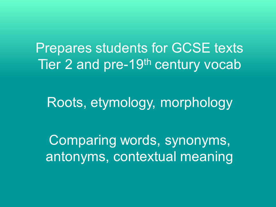 KS4 Whole School Vocab Resources - full year!