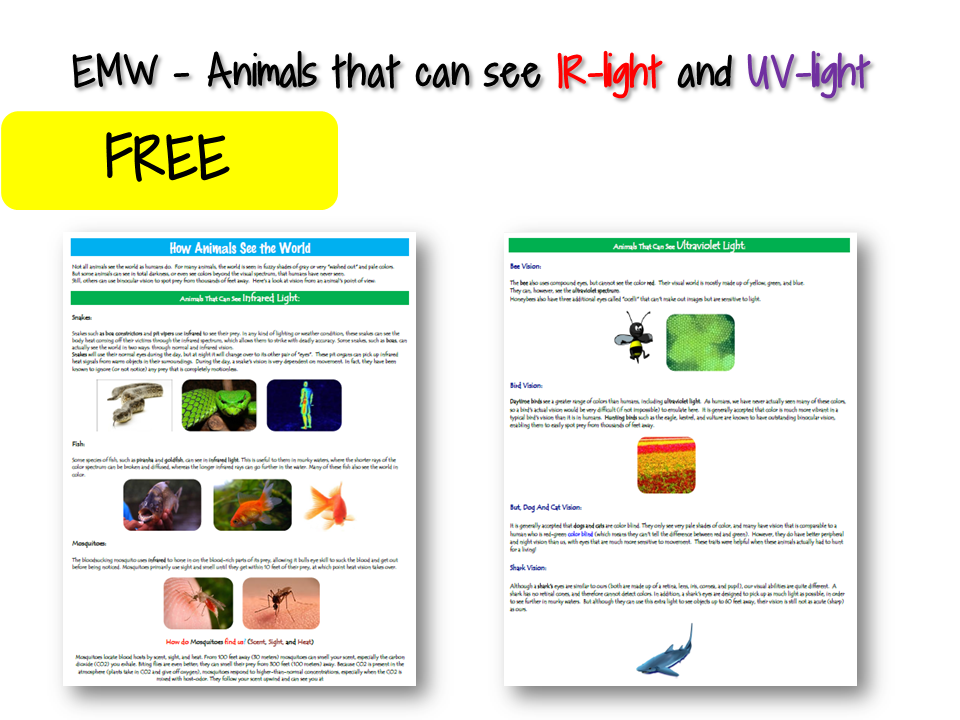 EMW - Animals that can see IR-light and UV-light