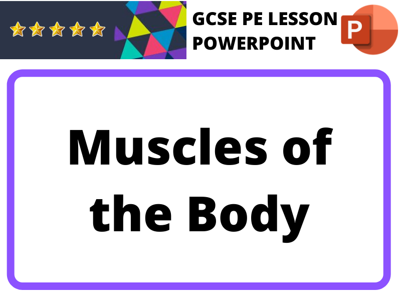 GCSE PE - Muscles of the Body (Lesson)