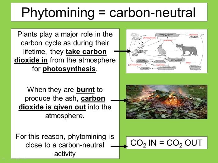 Phytomining and Bioleaching