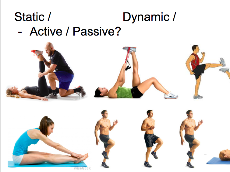 AQA AS Exercise Physiology New Spec