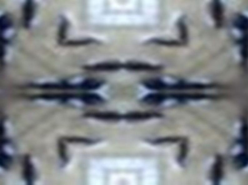 Batik Bark 3