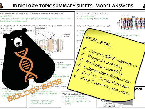 IGCSE Biology Topic 14 - Coordination & Response - Summary