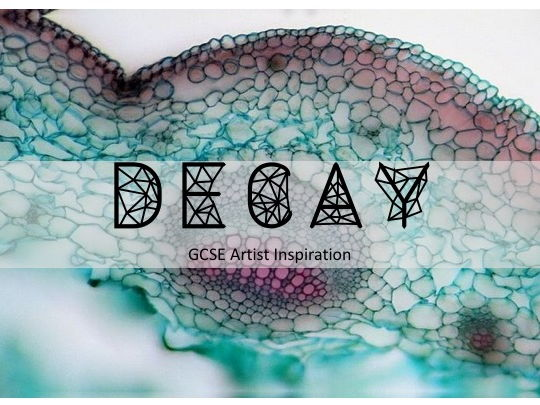GCSE Art- Decay Project