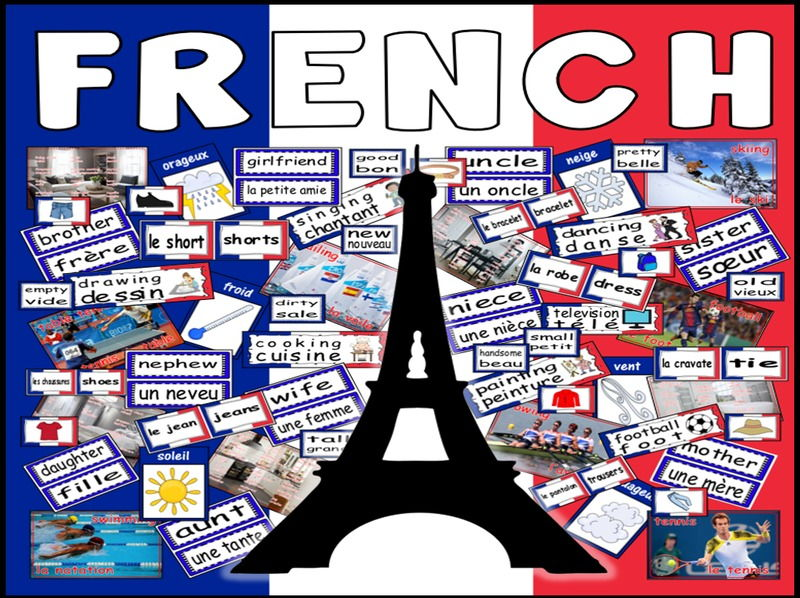 FRENCH LANGUAGE TEACHING RESOURCES DISPLAY FLASHCARDS POSTERS SET 2