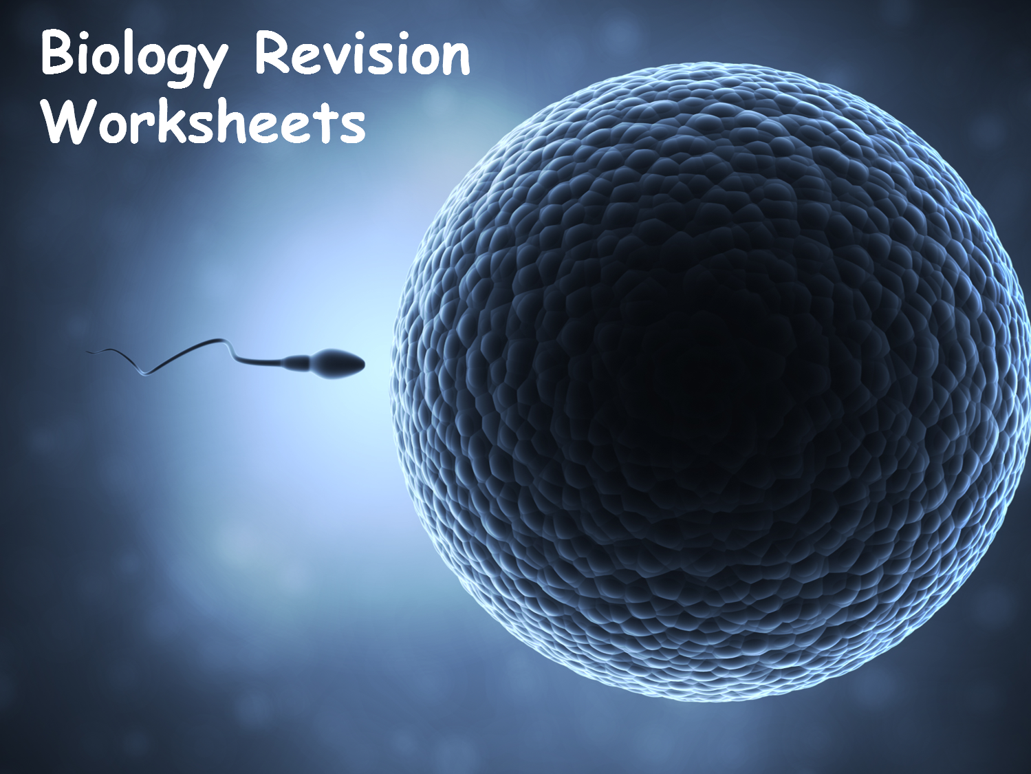 Edexcel Combined Science Biology Revision Worksheets