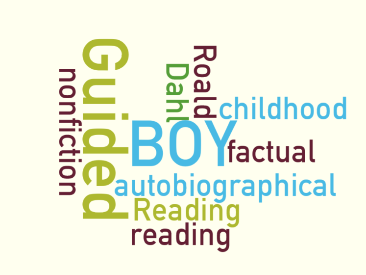 Roald Dahl Boy complete half term's Guided Reading