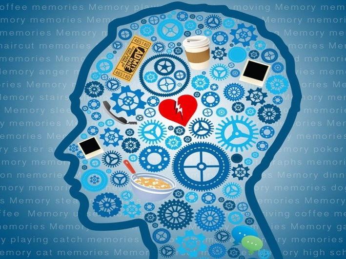 AQA A Level Psychology (New Spec) - Memory Scheme of Work