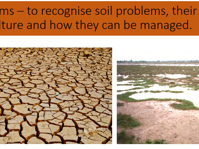 AQA A Level Population and Environment - Soil problems and management
