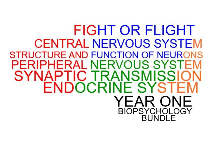 The Year One Biopsychology Bundle
