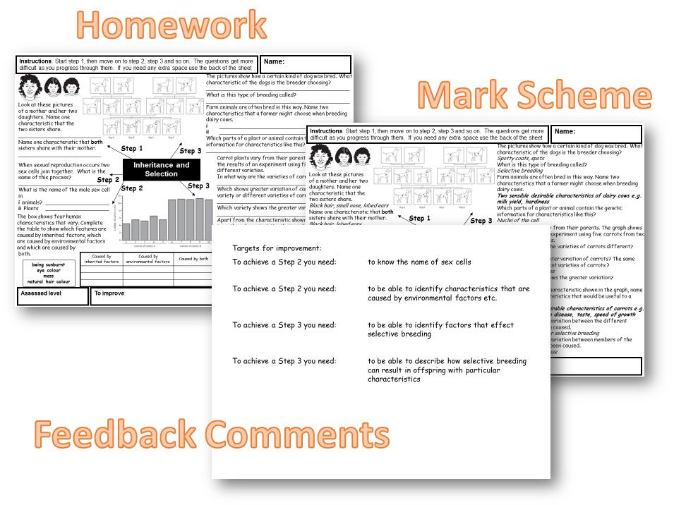 KS3 Biology homework tasks