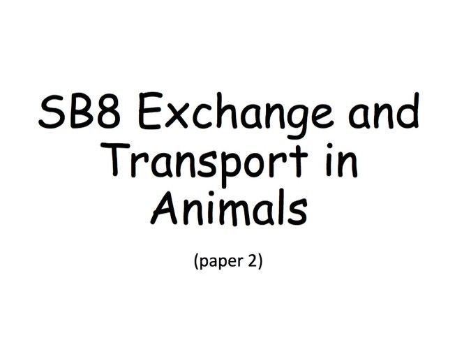 SB8 Guided Revision Booklet