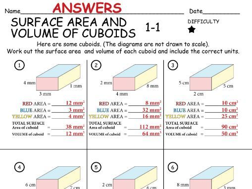 SURFACE AREA and VOLUME of a CUBOID Set 1 (90 questions over 10 worksheets) + ANSWERS