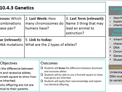 KS3 Genetics