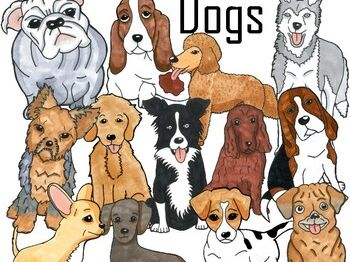 Dog Clip Art Bundle - BW and Color Collection of Popular Dog Breeds