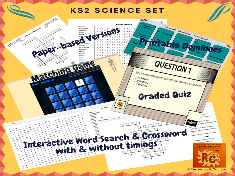KS2 The Human Skeleton Resource Bundle (5 products)
