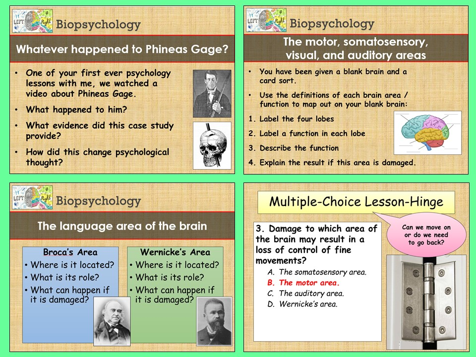 AQA A-level Psychology - Localisation of Brain Function - Biopsychology Topic
