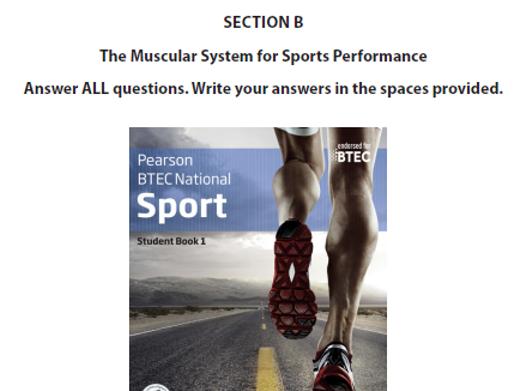 Muscular System - BTEC Sport
