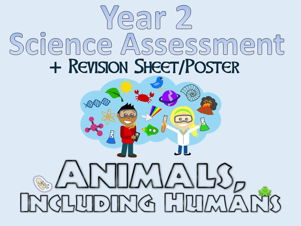 Year 2 Science Assessment: Animals, Including Animals + Revision Sheet/Poster