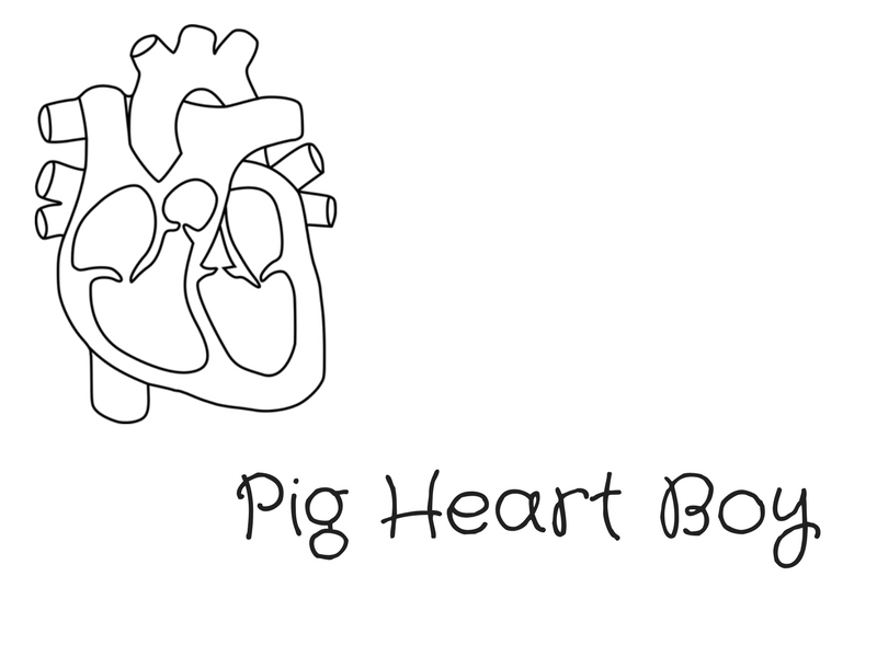 pig heart boy Pig heart boy by malorie blackman - we use cookies to deliver functionality and provide you with a better service.