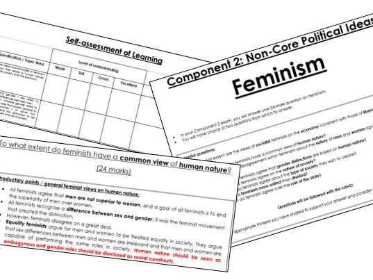 Edexcel A-Level Politics: Feminism Exam Guidance & Detailed Essay Plans