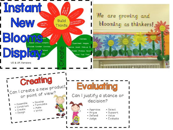 Instant New Blooms Taxonomy Display