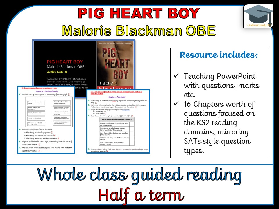 Pig Heart Boy - Whole class guided Reading
