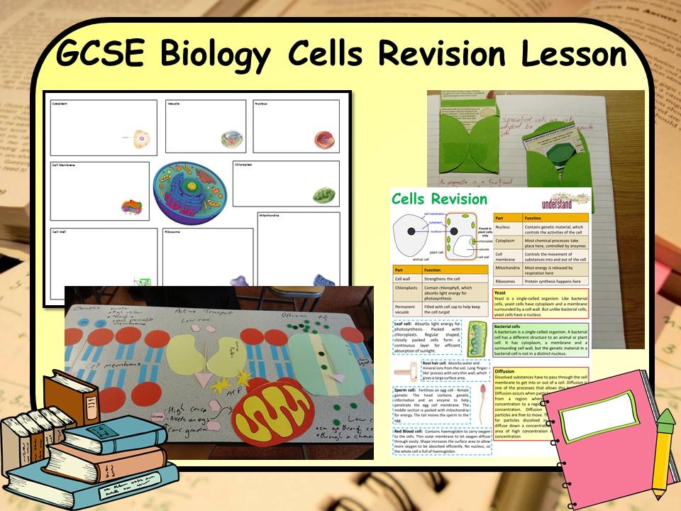 GCSE KS4 Biology (Science) Cells Revision Lesson