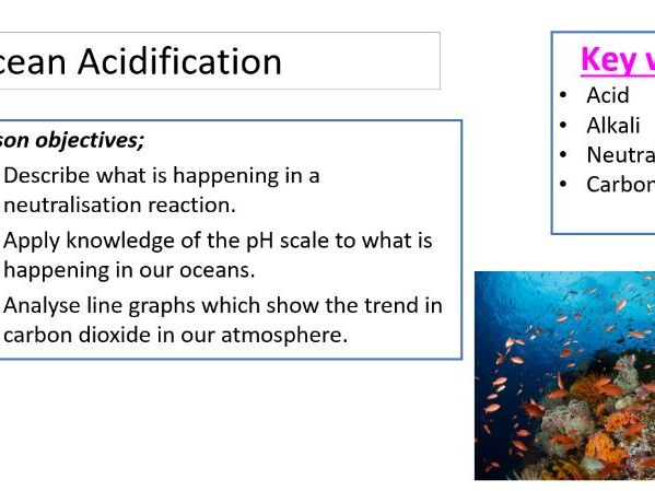 Ocean Acidification - STEM lesson/stand alone/HSW KS3 higher ability or KS4 lower ability