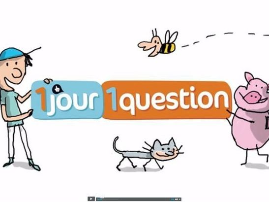 1jour1actu listening training, with exercises and answer sheets VOLUME 1