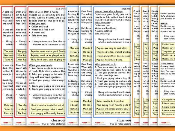 KS1 SATs Practice True or False Reading Statements