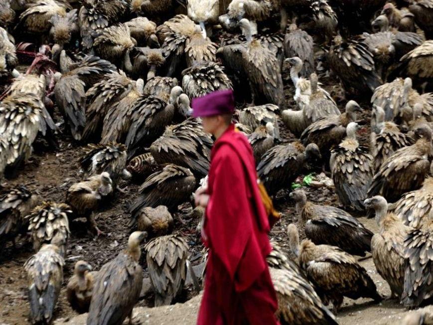 New AQA GCSE RE – Buddhist  Practices