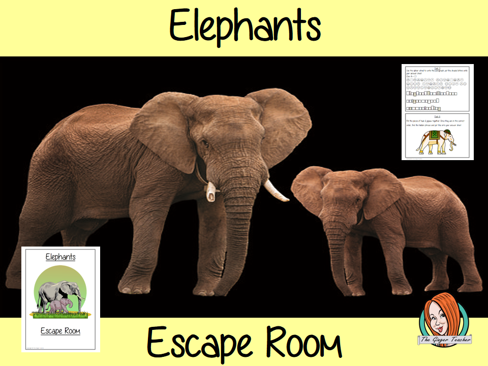 Elephants Escape Room Game