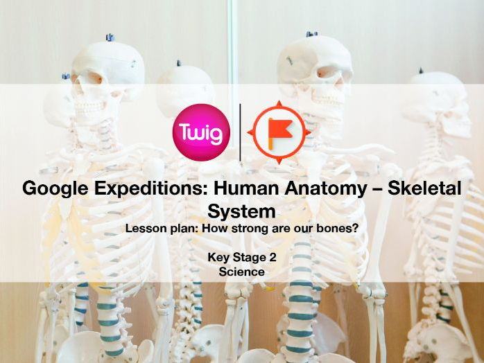 Division Worksheets 3rd Grade Excel The Skeletal System  Googleexpeditions By Acaffrey  Teaching  Ks1 Comprehension Worksheets Excel with Sight Worksheet Word The Skeletal System  Googleexpeditions By Acaffrey  Teaching Resources   Tes Boundaries Worksheets Word
