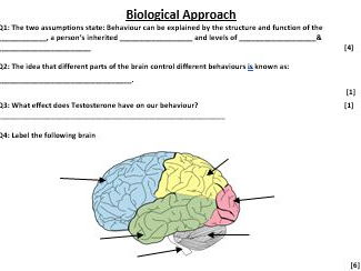 BIOLOGICAL APPROACH & BIOPSYCHOLOGY - points  revision test - AQA Psychology (new spec) Year 1