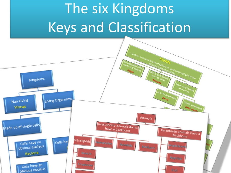 Keys and Classification, the SIX Kingdoms
