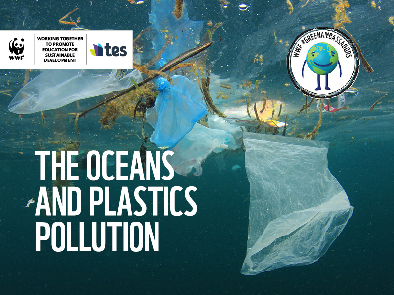 WWF Oceans and Plastics KS2 Activity set