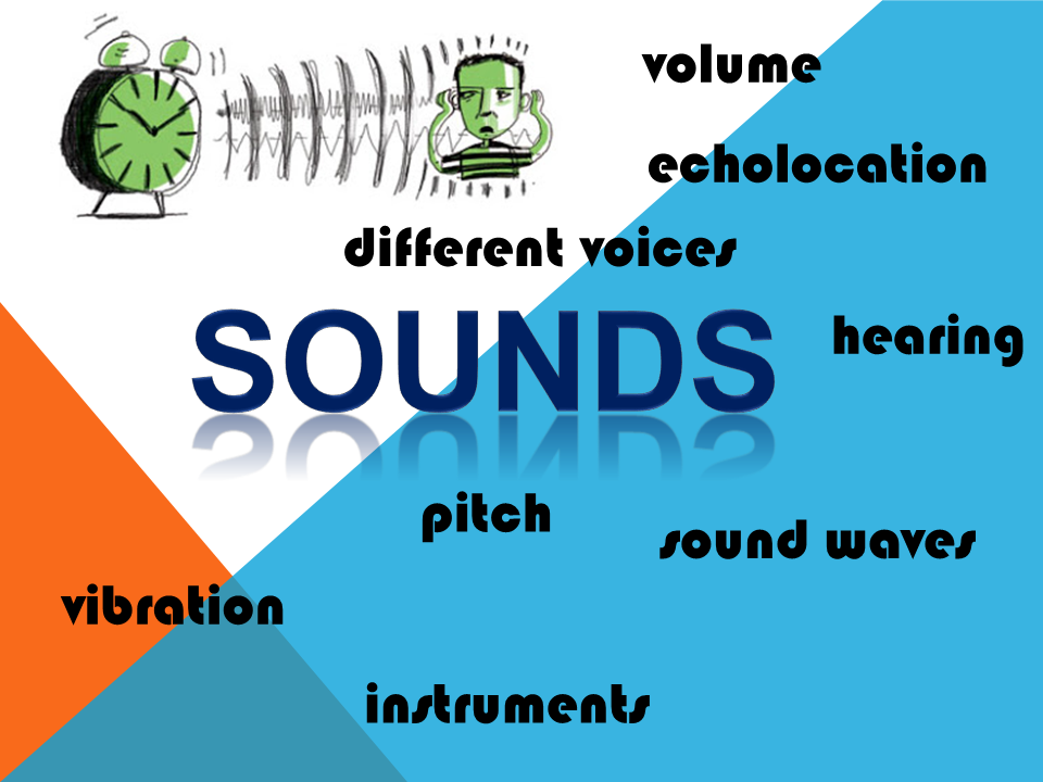 Sounds: How Humans & Animals Hear, Musical Instruments, Our Voice - Plans, Presentations, Activities